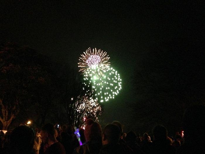 Bonfire 2014 Carlisle Fireshow (3) (2)