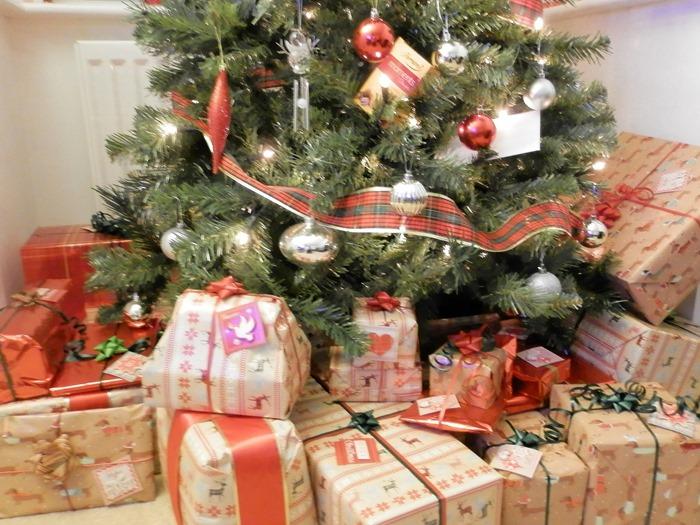 Christmas 2015 (3)