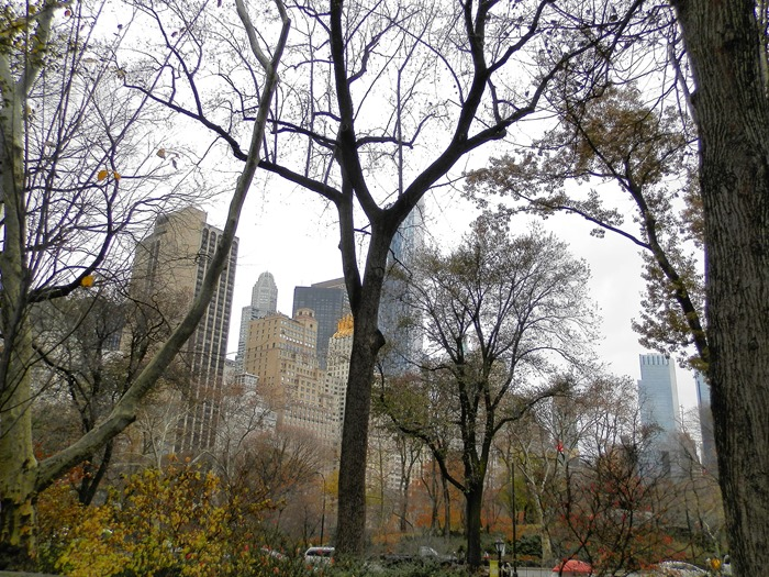New York (112)